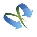 Ice Nyc logo icon