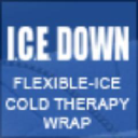 ICE Down Company Logo