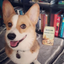 Identity Theory logo icon