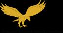 idsscorp.net logo icon