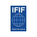 Ifif logo icon