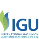 Igu logo icon