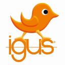 Igus logo icon