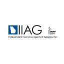 Iiag logo icon