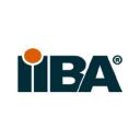 Iiba logo icon