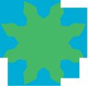 Iip logo icon