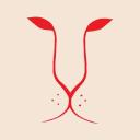 Ildenaro logo icon