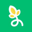 Image Fu logo icon