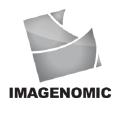 Imagenomic logo icon