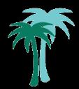IMAIM CAPITAL, LLC logo
