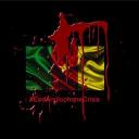 immigrechoisi.com logo icon