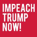 Impeach Donald Trump Now logo icon
