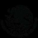 Inadem logo icon