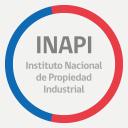 Inapi logo icon