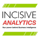 Incisive Analytics LLC on Elioplus
