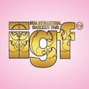 Iigf logo icon