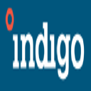Indigo Stock
