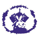 Indigo Marmoset logo icon
