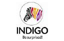 Indigo Paints logo icon