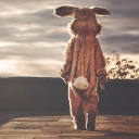 Info Bunny logo icon