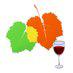 Infovini logo icon