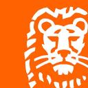 Ing Bank Türkiye logo icon