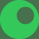 In Segment logo icon