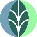 Insinc logo icon