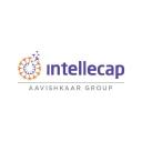Intellecap logo icon