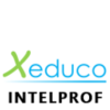INTELPROF TRAINING logo
