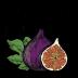 INTERFAITH MINISTRIES OF GREATER MODESTO