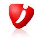 Internovus logo icon