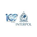 Interpol logo icon