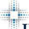 INTREORG (OTC: IORG) logo