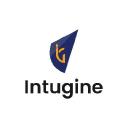 Intugine logo icon