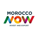 Invest In Morocco logo icon