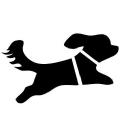 Invisible Puppy logo icon