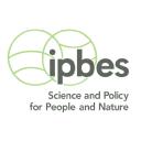 Ipbes logo icon