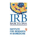 Irb Barcelona logo icon