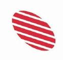 Isolux Corsan logo icon