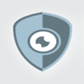 Isr Security Inc logo icon
