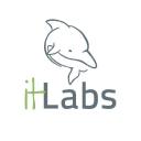 It Labs logo icon