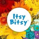 Itsy Bitsy logo icon