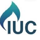 I.U.Consult LTD logo