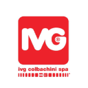 ivgspa.it logo icon