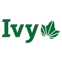 Ivy League logo icon
