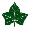 Ivysport logo icon
