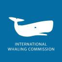 Iwc logo icon