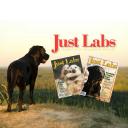 Just Labs Magazine logo
