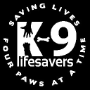 9 Lifesavers logo icon
